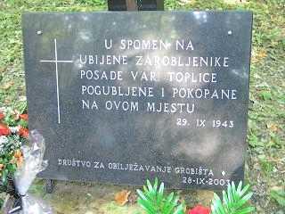 20050925-00 Leskovec ploca