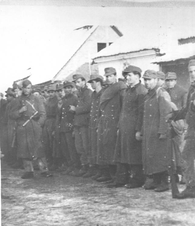 Domobrani zarobljeni od boraca 27. udarne divizije kod Brčkog 17. januara 1945.