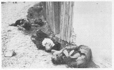 Četnici i partizani su ubili u selu Koraj i ovo petero djece muslimanske vjere.