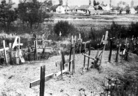 3010_1_gakowa_mass_graves
