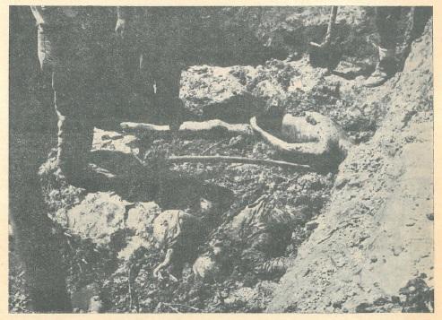 Kada je otvoreno treće masovno grobište na Pašincu kod Prijedora, pružila se ova slika..