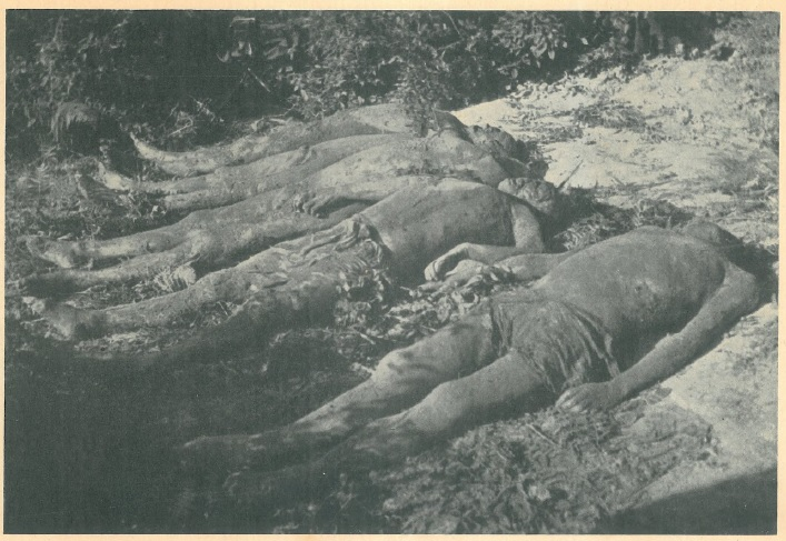 Pet tijela u Pašincu kod Prijedora sa teško unakaženim glavama