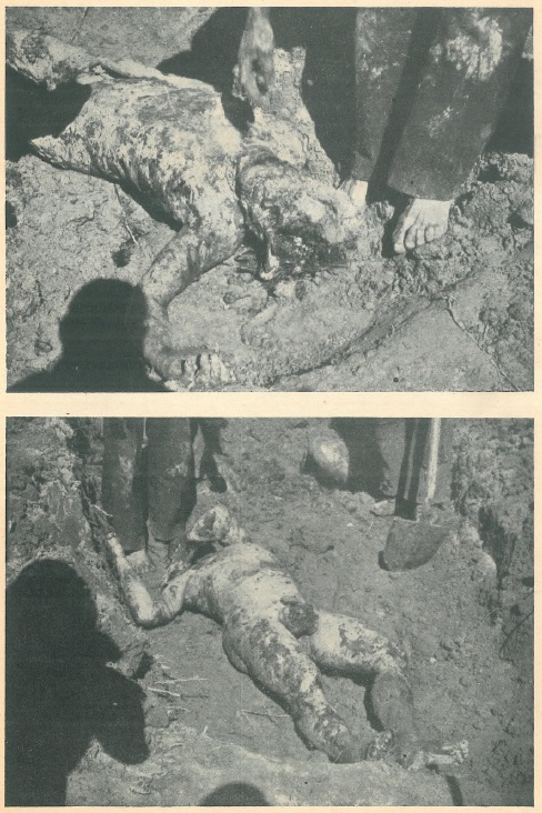 Pogled na ekshumirana mrtva tijela dvojice Hrvata na Pašincu kod Priedora