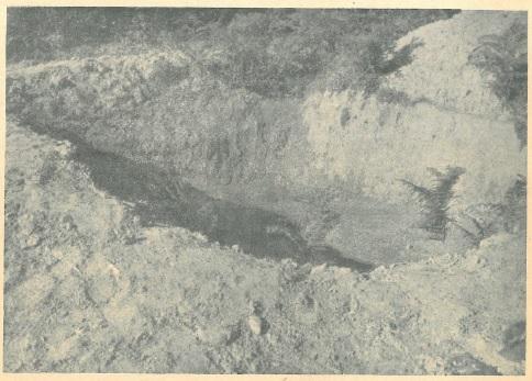 Pokraj grobova poubijanih na Pašincu kod Prijedora nađene su još dvije ovakve velike svježe grabe u koje su imali doći drugi ljudi, koje su partizani namjeravali poubijati.