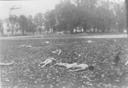12. Likvidirani zarobljenici domobrani od 6.KNOU brigade