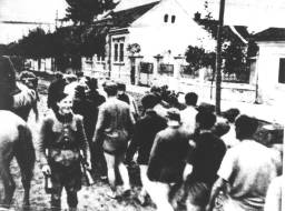 15. Partizan sa osmijehom smrti, pored zarobljenika sa skinutim hlačama!