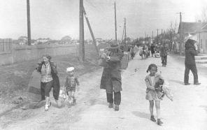 93. Civili kreću na Križni put, Vojvodina 1945.