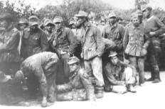 94. Križni put, Vojvodina 1945.