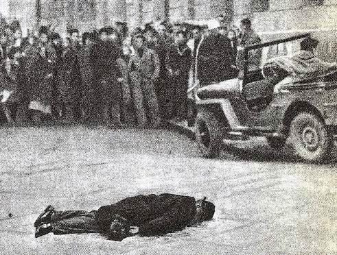 Protulipac ubijen u Trstu - Copy
