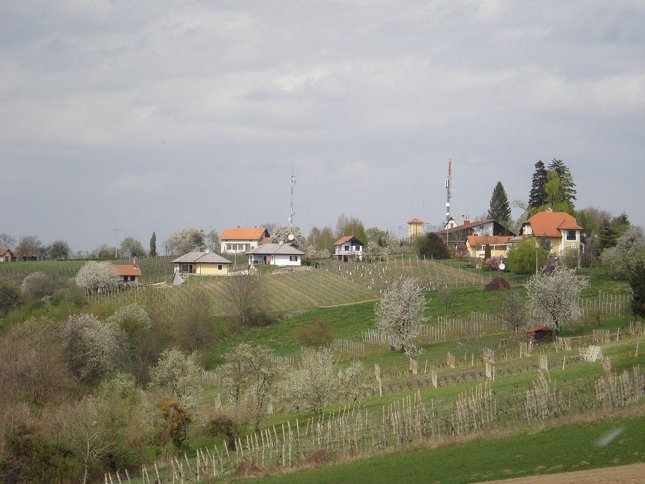 Vučetinec, rodno mjesto Vinka Kosa