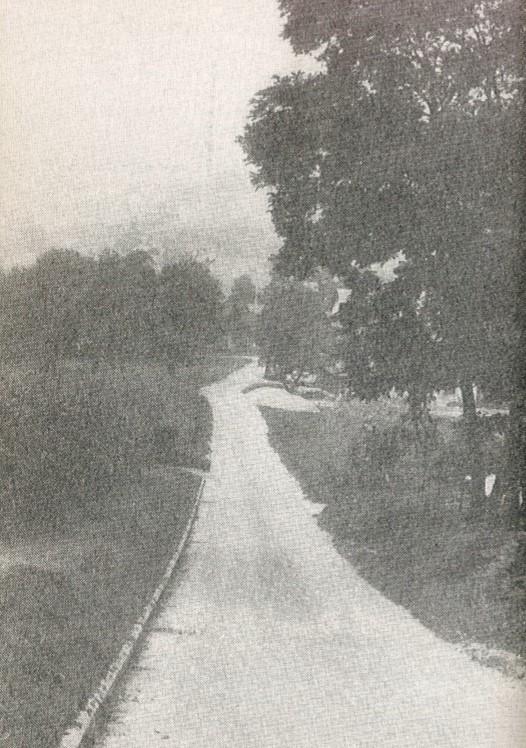 Cesta kojom su vodili zarobljenike u Teharski logor